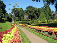 Botanical Gardens U0026 Tropical Spice Garden